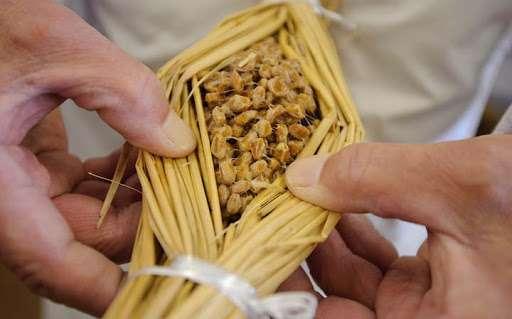 Natto là gì?